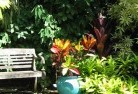 Adams Estate Tropical landscaping 11