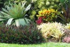 Adams Estate Tropical landscaping 9